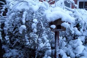 Schnee in Tostedt