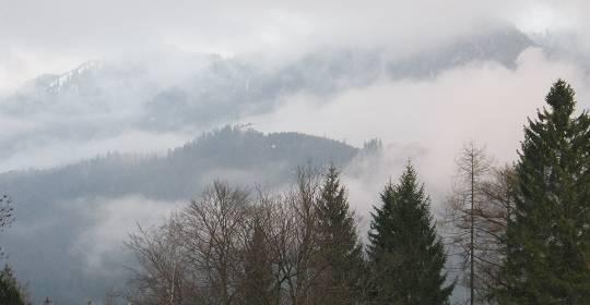 Nebelschwaden in Grainau 2012