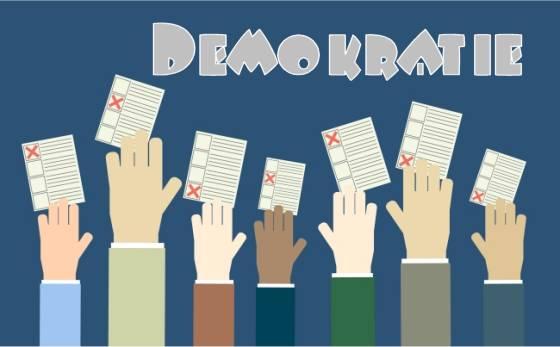 Wenn die Dummheit regiert: Demokratie
