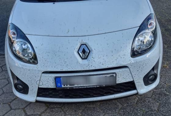 Das Killerauto macht Insekten den Garaus