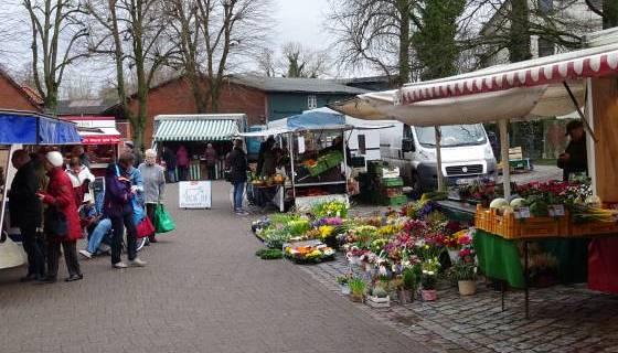 Wochenmarkt in Tostedt: ... auch Blumen und Brot!