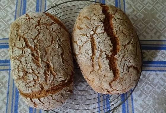 Willi backt Brot – zwei Roggen-Dinkelbrote kühlen aus