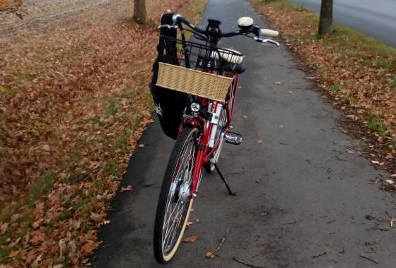 Willis Fahrrad am Wegesrand